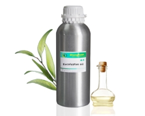 Aromatherapy Eucalyptus Essential Oil bulk Eucalyptus Globulus oil