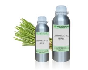 Natural Citronella Essential oil, Java citronella grass,Cymbopogon nardus CAS8000-29-1